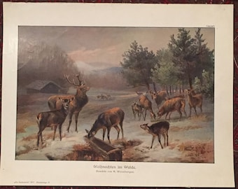 "Vintage Print of ""Christmas in the Woods"", painting by Anton Weinberger"