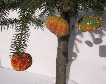 Sea Urchin Christmas Decorations - 3 REAL Sea Urchin Shells Christmas tree decorations - FREE SHIPPING - Sea Shell Christmas bulbs  -  C-11