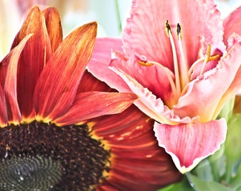 Sunflowers, Flowers, Flower Photography, Nature, Gardens, Color Photography