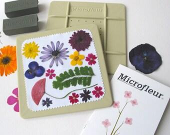 """Microfleur Microwave Flower Press 5x5"""" - For Pressing Flowers in Microwave - pressed flowers - pressed flower art - pressed ferns - leaf art"""