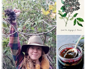 Hand-foraged and crafted Elderberry Syrup / Handcrafted Elderberry Syrup / Elderberry Tonic / Elderberry Elixir / Immune Booster