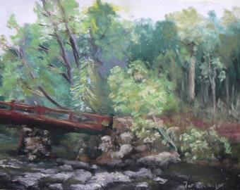 Rushing Water Musconetcong River