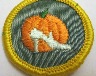 """Vintage Girl Scout Cadette Badge """"Good grooming"""" circa 1960's"""