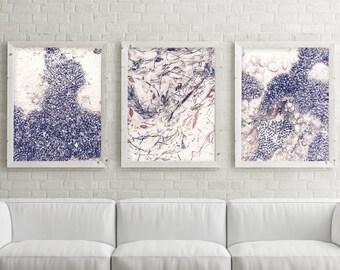 Set of 3 Downloadable Prints, Coastal Prints, Minimalist, Poster, Print Set, Nautical, Wall Art, Beach, Sea, Ocean, Coastal Decor, Shells