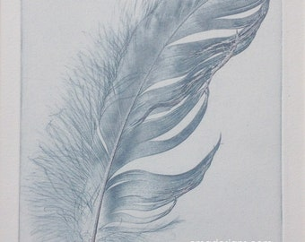 """Feather, original etching LIMITED EDITION Art 6"""" x 8"""""""