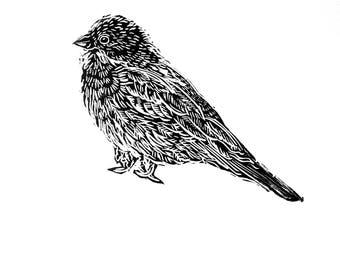 Corn bunting, Linocut, Hand Printed, Linoprint,  (Cornish wildlife)