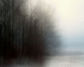 """Abstract landscape photography trees forest dark blue black dreamy woods surreal nature - """"Awakening"""" 8 x 10"""