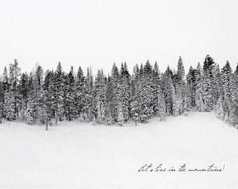 Bear Lake Snow- Utah postcard