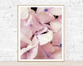 "Bathroom Art - Vertical Photo : ""Dewy Hydrangeas"" - Hydrangea Print - Wall Art - Botanical Print - Botanical Art - Flower Decor - Flower Art"