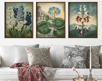 Botanical print set of 3, flower print set, botanical poster, botanical wall decor, flowers in blue tones