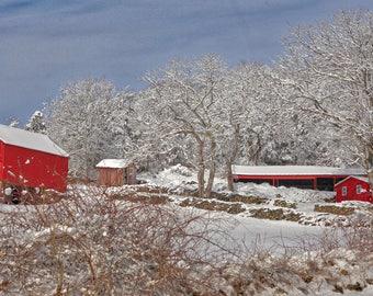 Winter snow scene in Stonington, CT