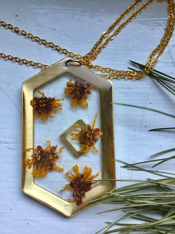 Witch hazel flower brass hexagon necklace