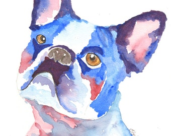 Watercolor dog portrait, French Bull dogs, paintings of French Bull dogs,  Dog portraits in watercolour, French bull dog art, dog print