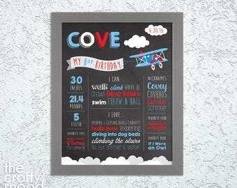 Airplane Themed Baby Birthday Poster - Digital File