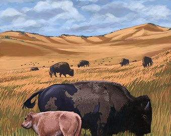 Bison and Calf Grazing - Antelope Island State Park (Art Prints available in multiple sizes)