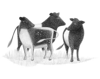 Three Cows - 4x6 print