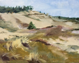 Dune landscape, plein air coastal landscape in Schoorl NL, original oil painting on panel