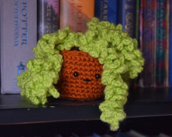 Donkey Tail Crocheted Succulent