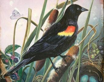 "Original oil painting Red-winged blackbird 20x20 cm (8x8"") wildlife art, nature art"