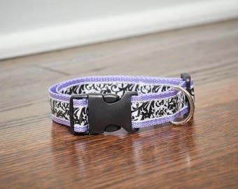 Damask Dog Collar