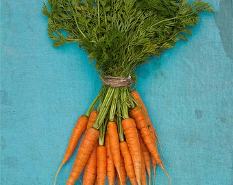 Kitchen Art - Food photography, Grow Your Own - Carrots on Blue