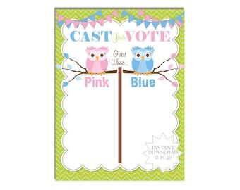 Owl Gender Reveal Voting Poster-Blue & Pink Voting Poster-Cast Your Vote Poster-INSTANT DOWNLOAD