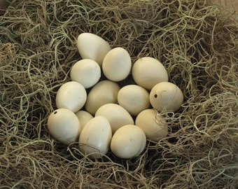 READY TO SHIP!!! 12+2 Spares (14 total) Hand Blown Empty White Free Range Quail Eggs One Hole