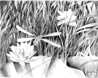 Pencil dragonfly lilypad scene 8x10 print picture black and white Dragonfly wall art Dragonfly decor Dragonfly art print