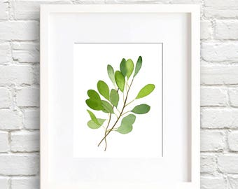 Eucalyptus Leaf Art Print - Nature Wall Decor - Leaves - Watercolor Painting