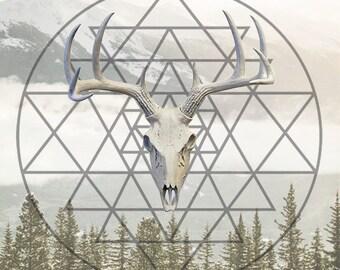 Rebirth - Deer Digital Download
