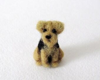 Miniature Welsh terrier