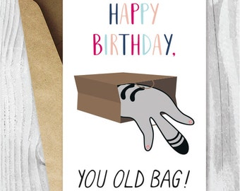 Happy Birthday Printable Cards, Funny Cat Birthday Cards Instand Download, Old Bag Birthday Card Digital Download, Cat Fans, Cats in Bags