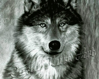 ALPHA by Carla Kurt Signed PRINT