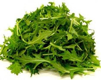 Japanese Brassica Rare Organic seeds Brassica Juncea