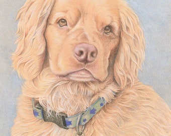 Custom Pet Portrait, Colored Pencil Dog, Original, Hand Drawn Art from your Photo