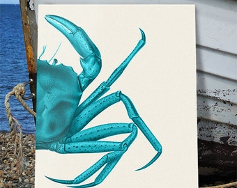 Crab Art Print - Turquoise on Cream  crab wall art crab wall décor crab painting Nautical print Nautical Wall Art new england crab Beach Art