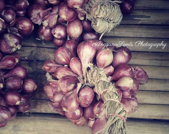 Red onions photograph, kitchen wall art, purple, brown, condiment, cafe decor, 8x8, rustic, country, still life, whimsical, under 50