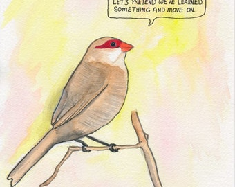 The Common Waxbill.