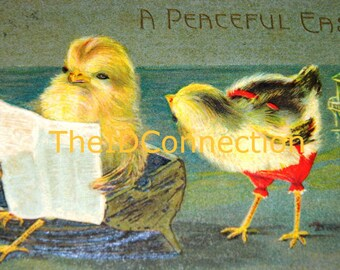 Vintage Easter Postcard Peep, Vintage Easter Egg Postcard, Easter Peep, Chick, Easter Egg, Holiday Decor, Folk Art, News Paper