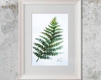 Fern ORIGINAL WATERCOLOR painting FERN art  Minimalist Nature Green kitchen wall art Green painting Wall plants Wall decor Birthday gift