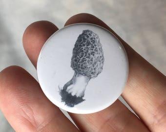 Button.....morel mushroom