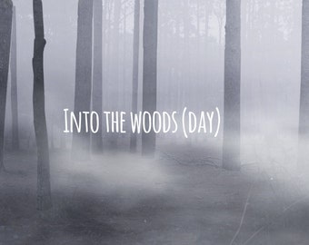 Premade Digital Background ~  Into the Woods (day and night)