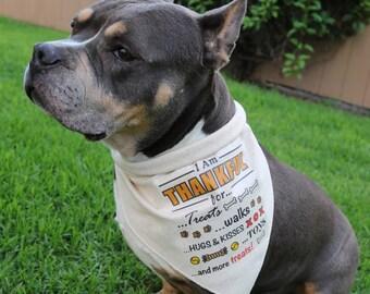 Thanksgiving Dog Bandana, Thankful for Treats, Walks, Hugs, Rustic Fall Pet Attire