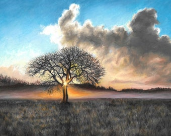 "Tree at Sunrise Art Print 8.5x11"" Colored Pencil Landscape Wall Art"