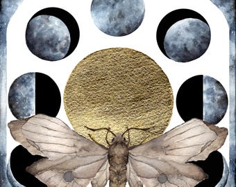 Moth's Moon
