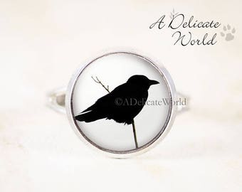 Silver Crow Ring, Small Adjustable Band with Black Bird Silhouette Photo under Round Glass, Gothic Style Raven Jewelry Accessory