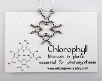 Silver Heme Molecule Necklace, Chlorophyll Molecule Necklace, Science Jewelry, Plant Necklace, Blood Necklace, Sterling Silver Chain
