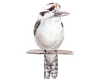 Kookaburra Print - Watercolour Painting
