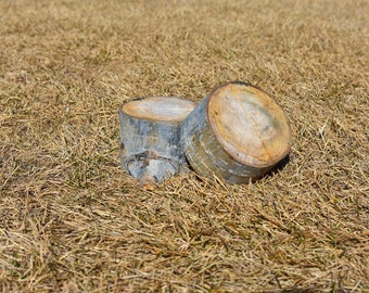 Aspen Tree Rounds-Set of 10