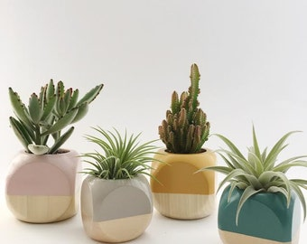 Geometric Planters // Colorblock + Wood (Plant not included)